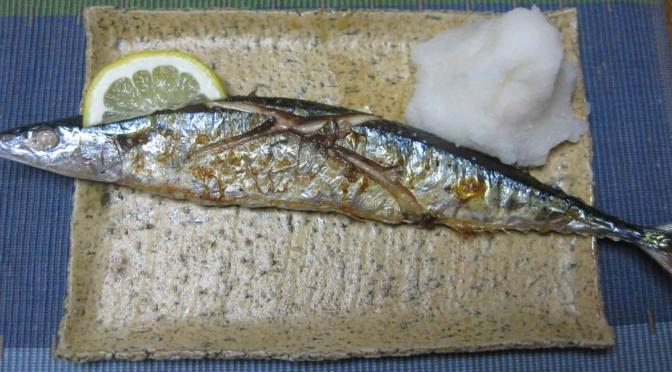 新秋刀魚(しんさんま)